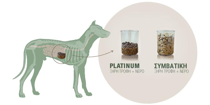 Platinum vs συμβατική τροφή